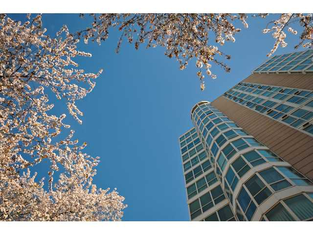 """Main Photo: 1204 1111 HARO Street in Vancouver: West End VW Condo for sale in """"ELEVEN ELEVEN HARO"""" (Vancouver West)  : MLS®# V876639"""