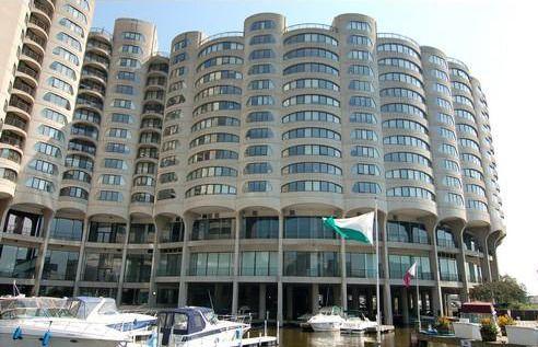 Main Photo: 800 Wells Street Unit 920 in CHICAGO: Loop Rentals for rent ()  : MLS®# 08759711