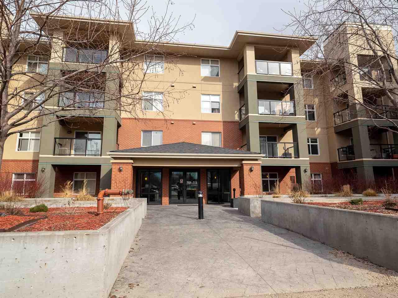 Main Photo: 214 7909 71 Street in Edmonton: Zone 17 Condo for sale : MLS®# E4151718