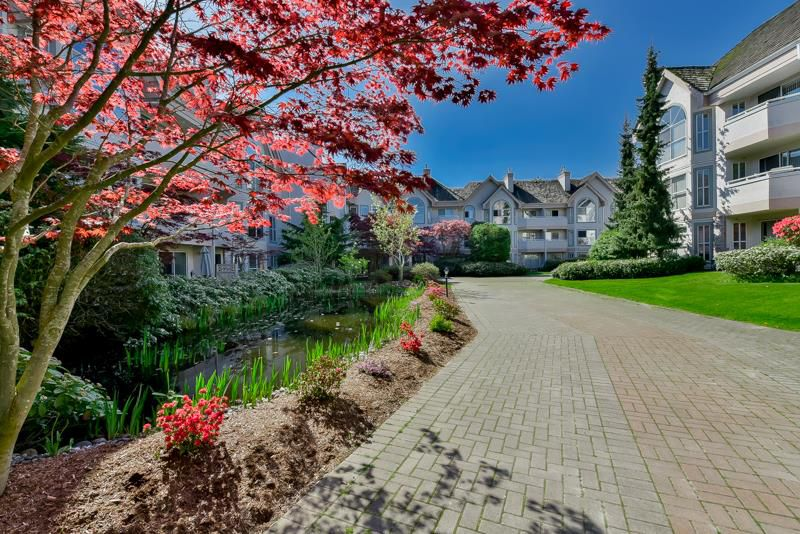 Main Photo: 214 7151 121 Street in Surrey: West Newton Condo for sale : MLS®# R2057191