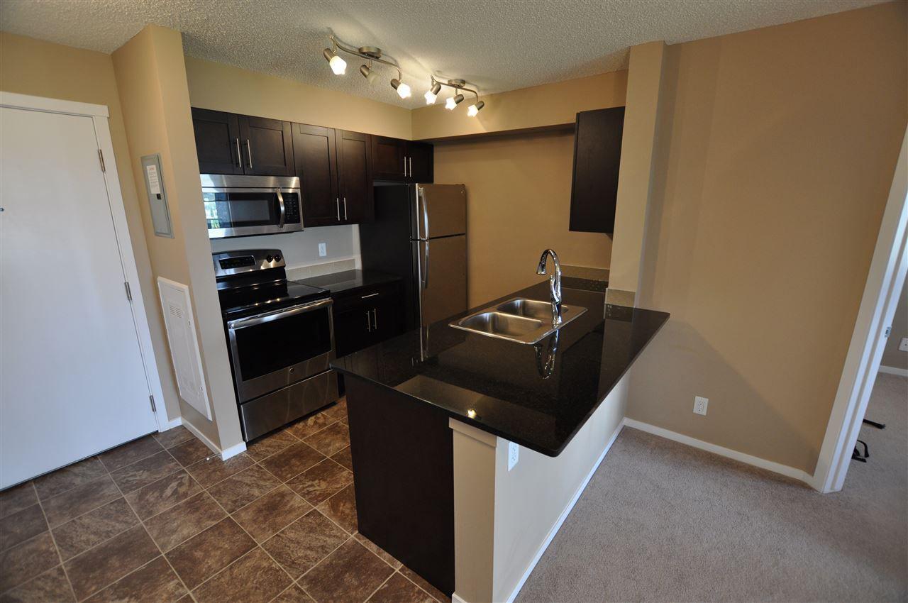 Main Photo: 317 5370 CHAPPELLE Road in Edmonton: Zone 55 Condo for sale : MLS®# E4164569