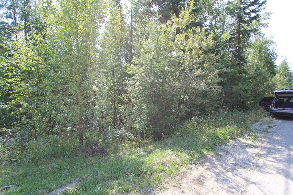 Main Photo: Lot 91 Anglemont Way in Anglemont: Land Only for sale (Shuswap)  : MLS®# 10069930