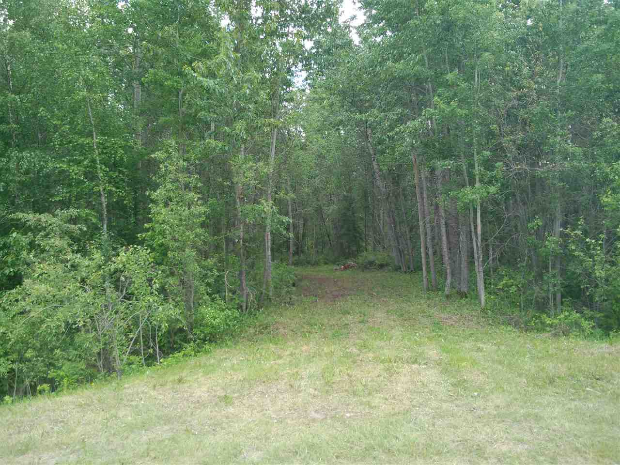 Main Photo: 32 53301 RGE RD 32 Road: Rural Parkland County Rural Land/Vacant Lot for sale : MLS®# E4134995