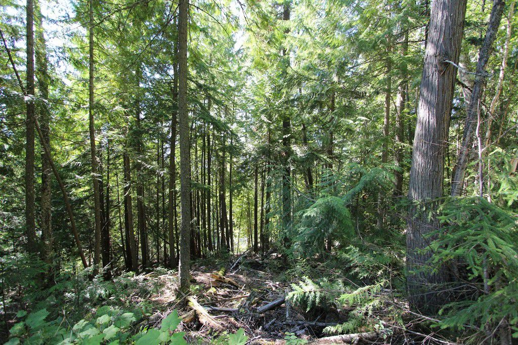 Main Photo: Lot 127 Vickers Trail: Land Only for sale : MLS®# 10071267