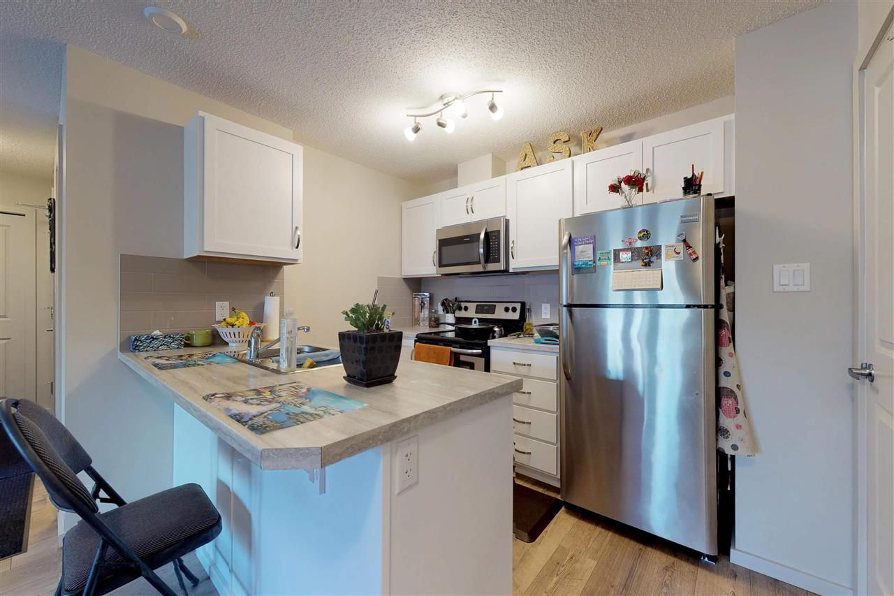 Main Photo: 111 7711 71 Street in Edmonton: Zone 17 Condo for sale : MLS®# E4146773