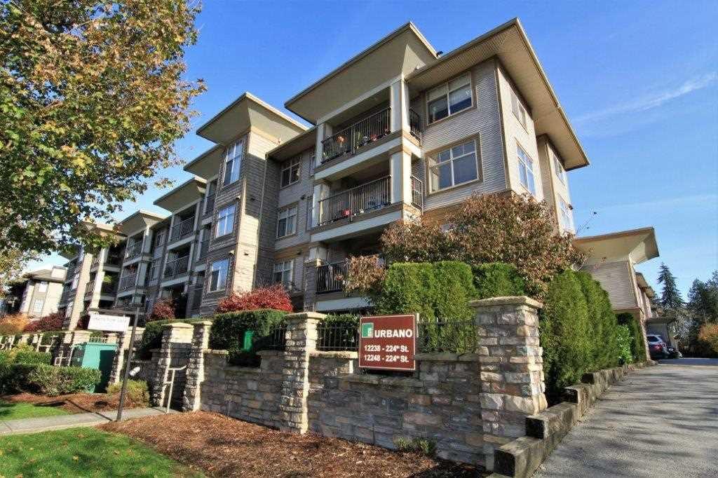 "Main Photo: 426 12238 224TH Street in Maple Ridge: East Central Condo for sale in ""URBANO"" : MLS®# R2321677"