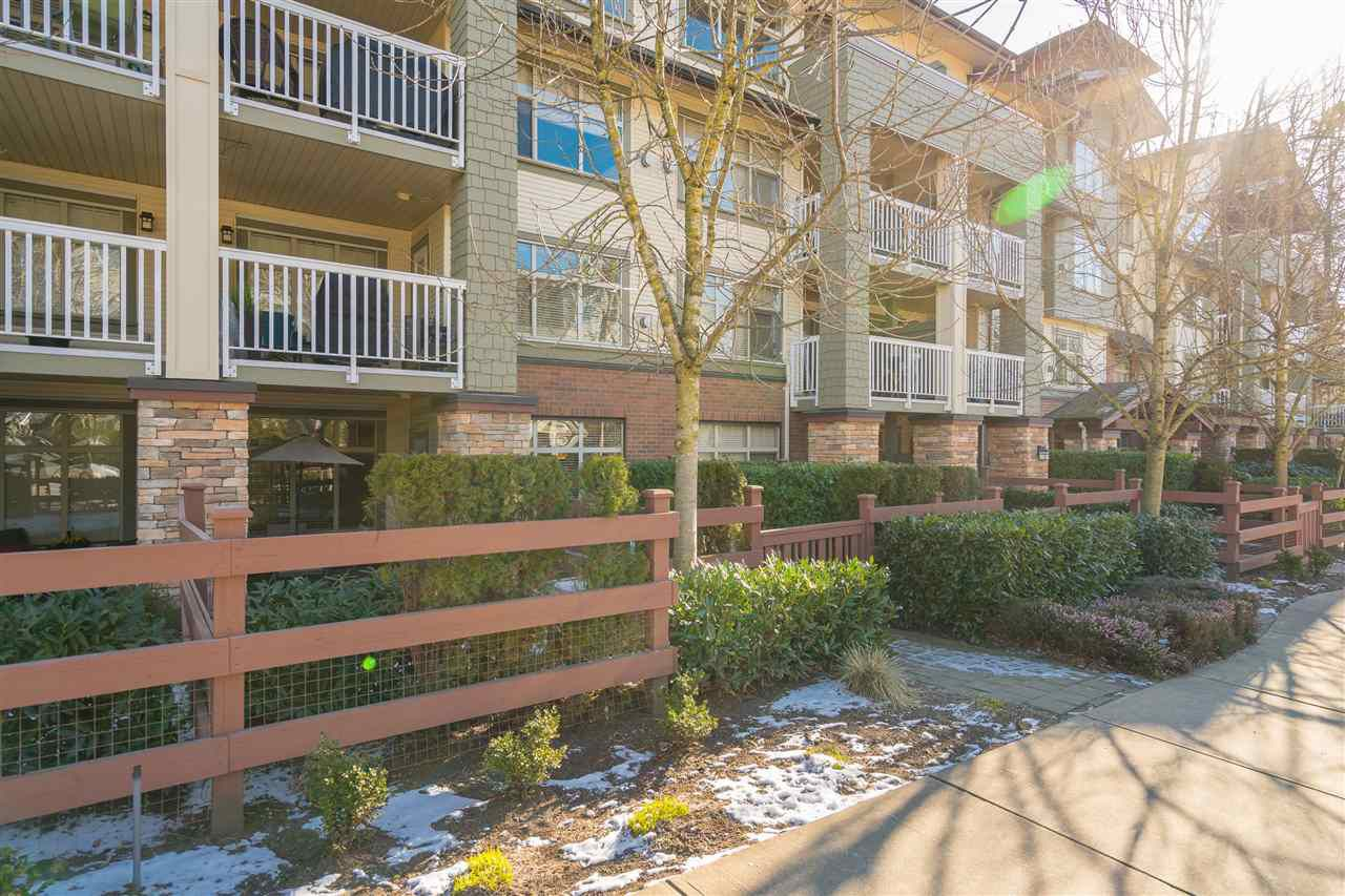 "Main Photo: 113 6500 194 Street in Surrey: Clayton Condo for sale in ""SUNSET GROVE"" (Cloverdale)  : MLS®# R2340242"