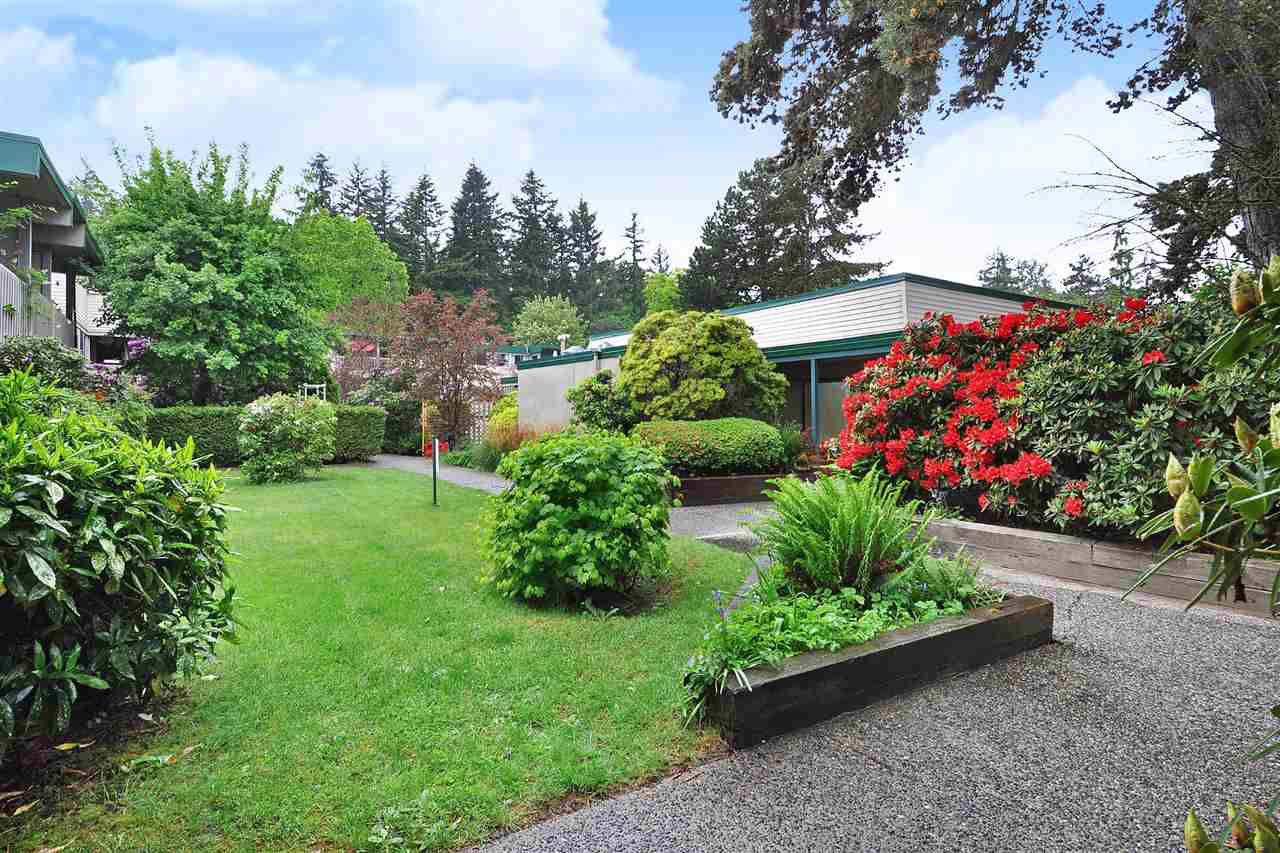"""Photo 16: Photos: 720 WESTVIEW Crescent in North Vancouver: Central Lonsdale Condo for sale in """"Cypress Gardens"""" : MLS®# R2370300"""
