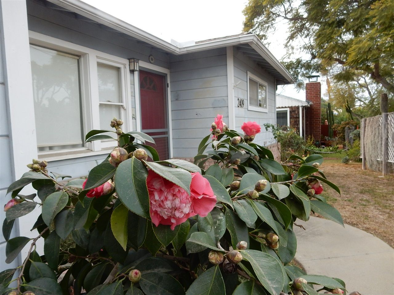 Main Photo: OCEANSIDE House for sale : 3 bedrooms : 2409 MESA