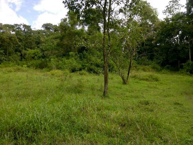Main Photo: : Bugaba Home for sale (Chiriqui)