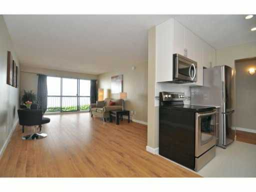 Main Photo: 227 588 East 5th Avenue in Vancouver: Mount Pleasant VE Condo for sale (Vancouver East)  : MLS®# v1002499