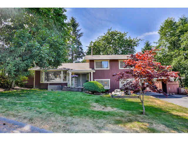 Main Photo: 14125 SUNRIDGE Place in Surrey: East Newton House for sale : MLS®# R2136897