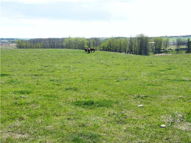 Main Photo: : Rural Mountain View County Rural Land for sale : MLS®# C3653320