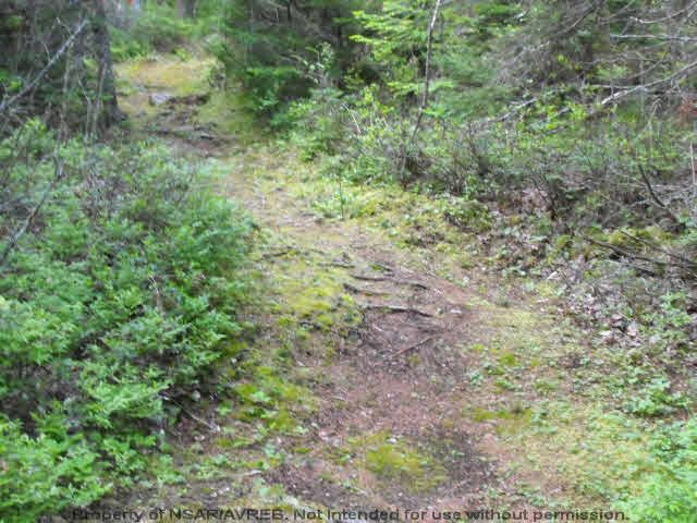 Photo 3: Photos: Lot 1 CHESTNUT Road in West Dublin: 405-Lunenburg County Vacant Land for sale (South Shore)  : MLS®# 201611199