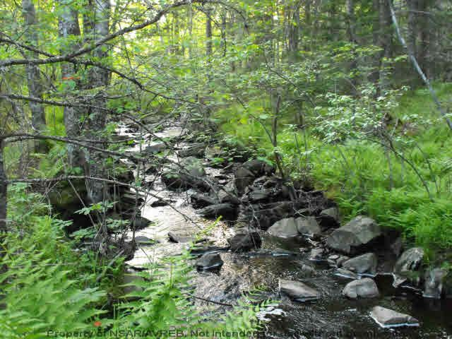 Main Photo: Lot 1 CHESTNUT Road in West Dublin: 405-Lunenburg County Vacant Land for sale (South Shore)  : MLS®# 201611199