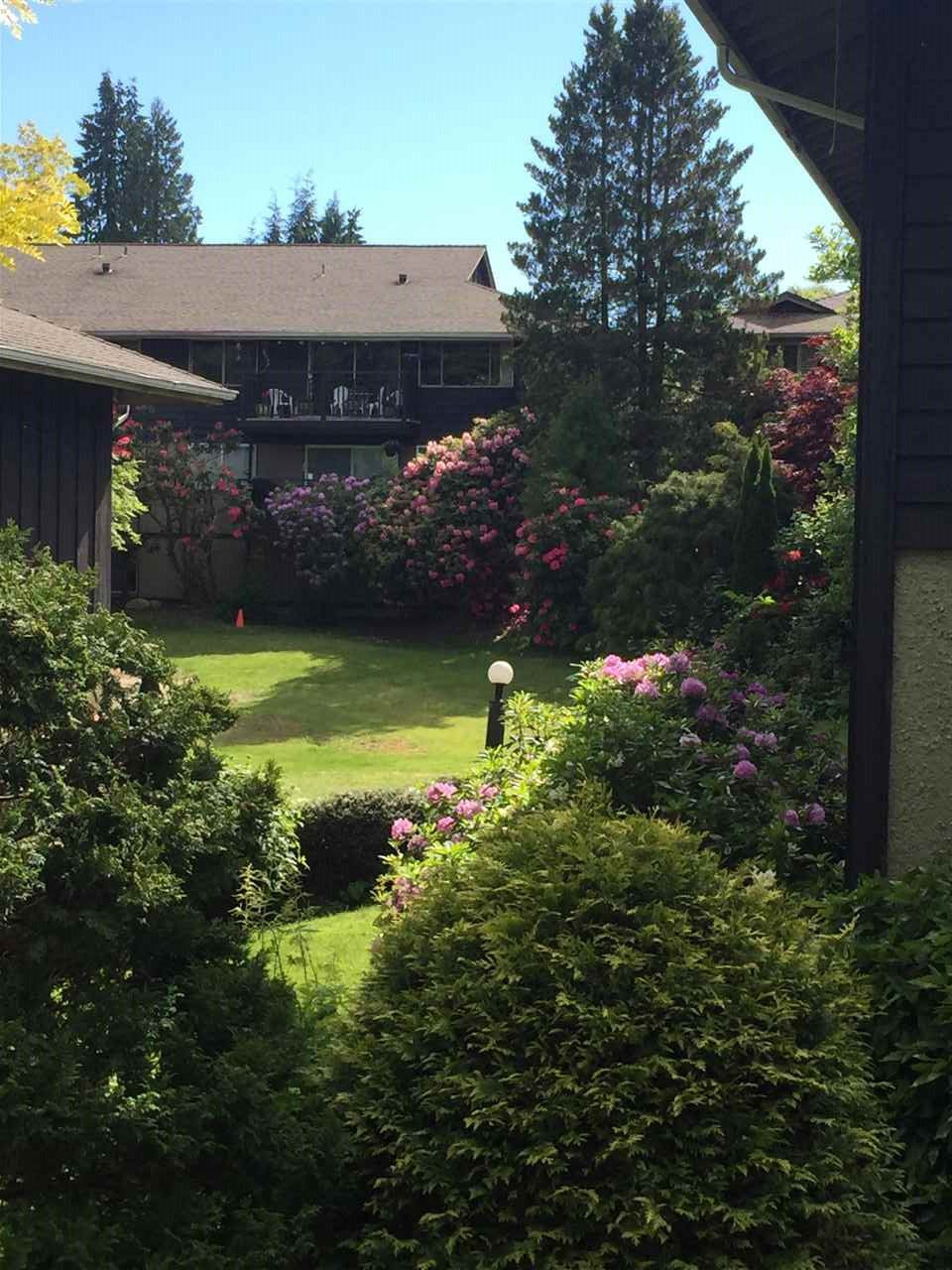 """Main Photo: 306 555 W 28TH Street in North Vancouver: Upper Lonsdale Townhouse for sale in """"CEDARBROOKE VILLAGE"""" : MLS®# R2138435"""
