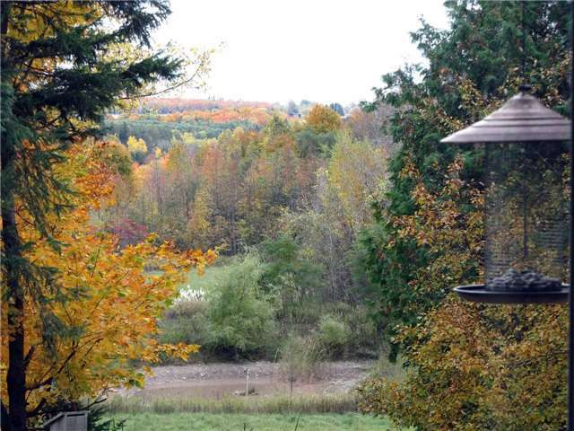 Main Photo: 876544 5th Line East in Mulmur: Rural Mulmur House (Bungalow) for sale : MLS®# X3770331
