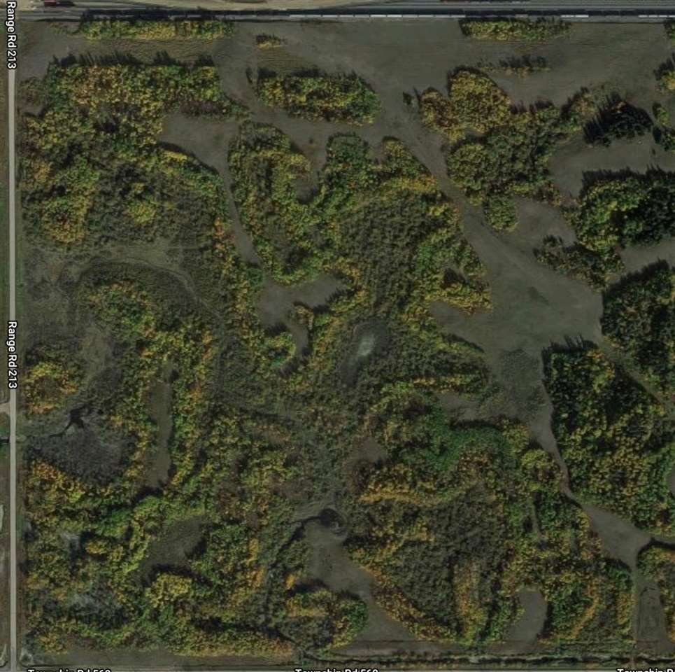 Main Photo: TWP 560 RR 213: Rural Strathcona County Rural Land/Vacant Lot for sale : MLS®# E4161330