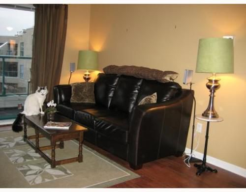 Main Photo: 214 189 16TH Ave in Vancouver East: Mount Pleasant VE Home for sale ()  : MLS®# V754067