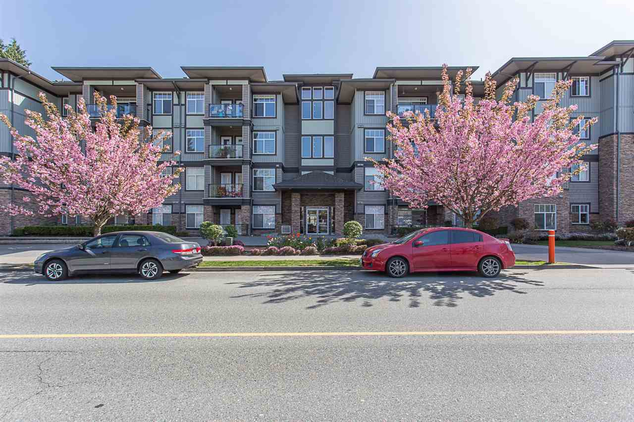 """Main Photo: 311 33338 MAYFAIR Avenue in Abbotsford: Central Abbotsford Condo for sale in """"The Sterling"""" : MLS®# R2262243"""