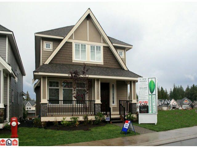 Main Photo: 7830 211A STREET in : Willoughby Heights House for sale (Langley)  : MLS®# F1205295