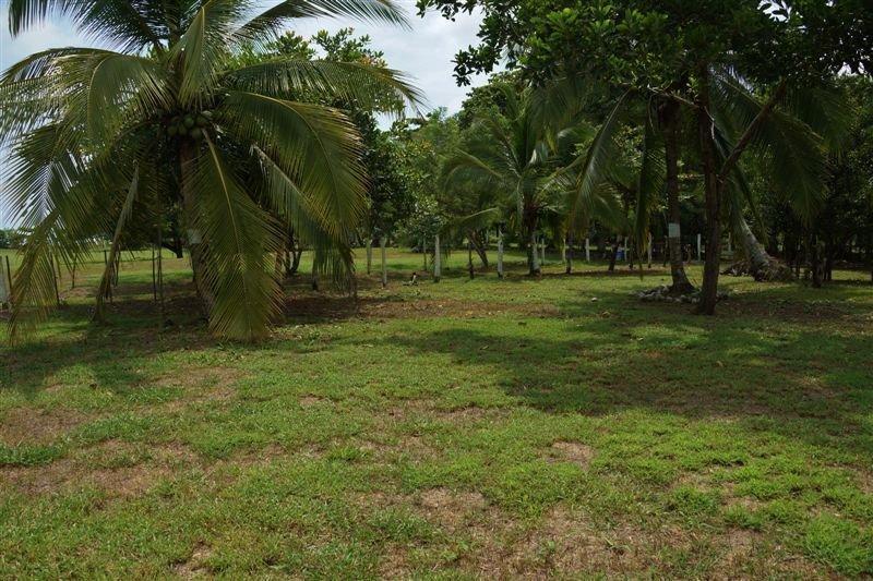 Main Photo: : Las Lajas Beach Home for sale (Chiriqui)