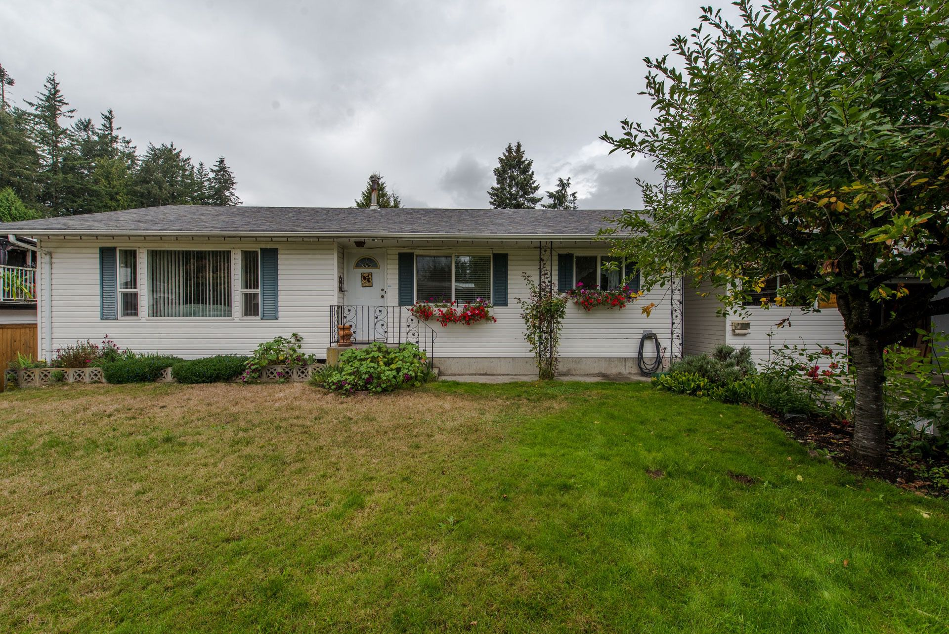 """Main Photo: 33329 RAINBOW Avenue in Abbotsford: Central Abbotsford House for sale in """"Hoon Park"""" : MLS®# R2303752"""
