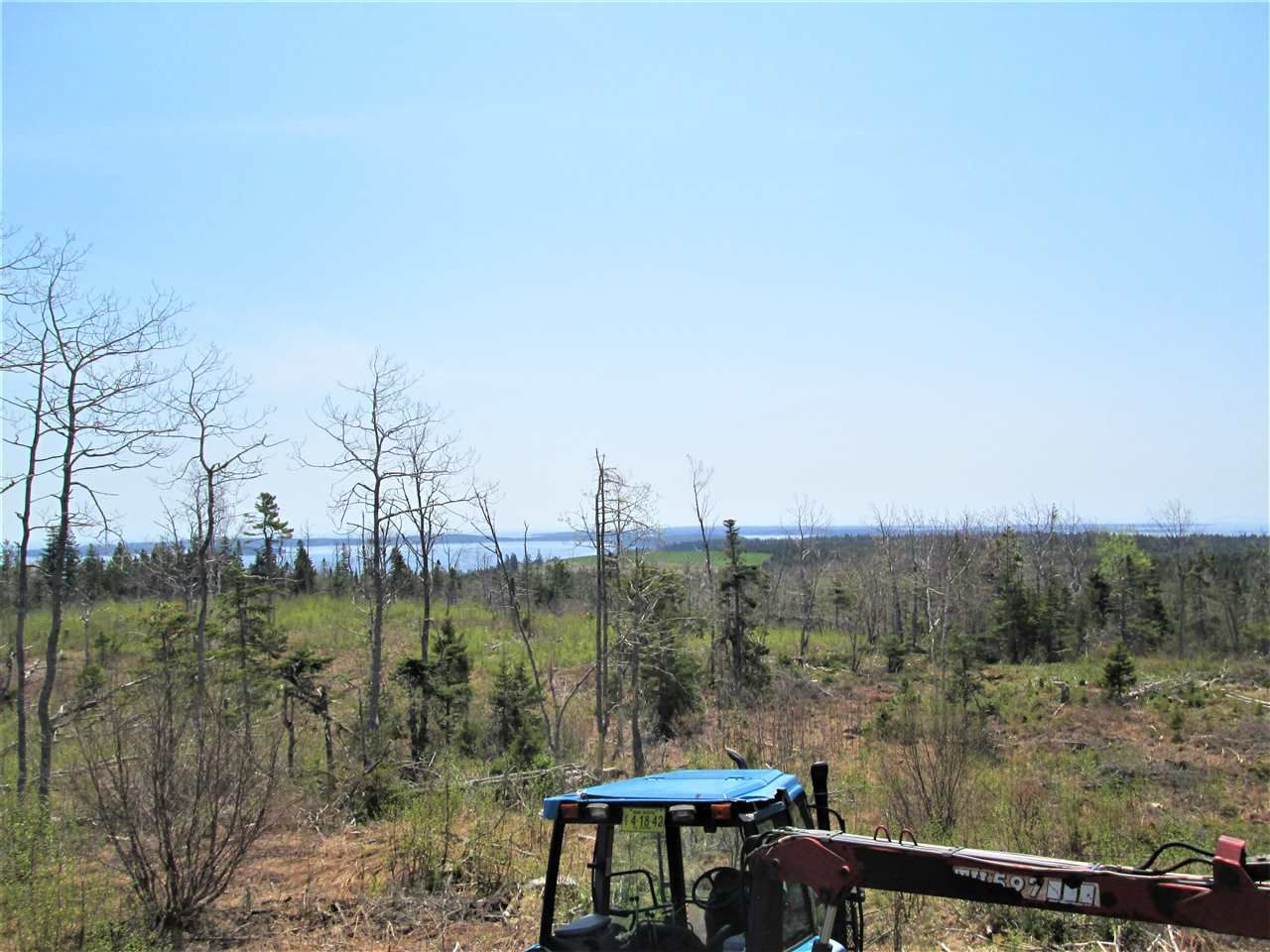 Photo 3: Photos: 3 lots Highway 331 in Dublin Shore: 405-Lunenburg County Vacant Land for sale (South Shore)  : MLS®# 201712817