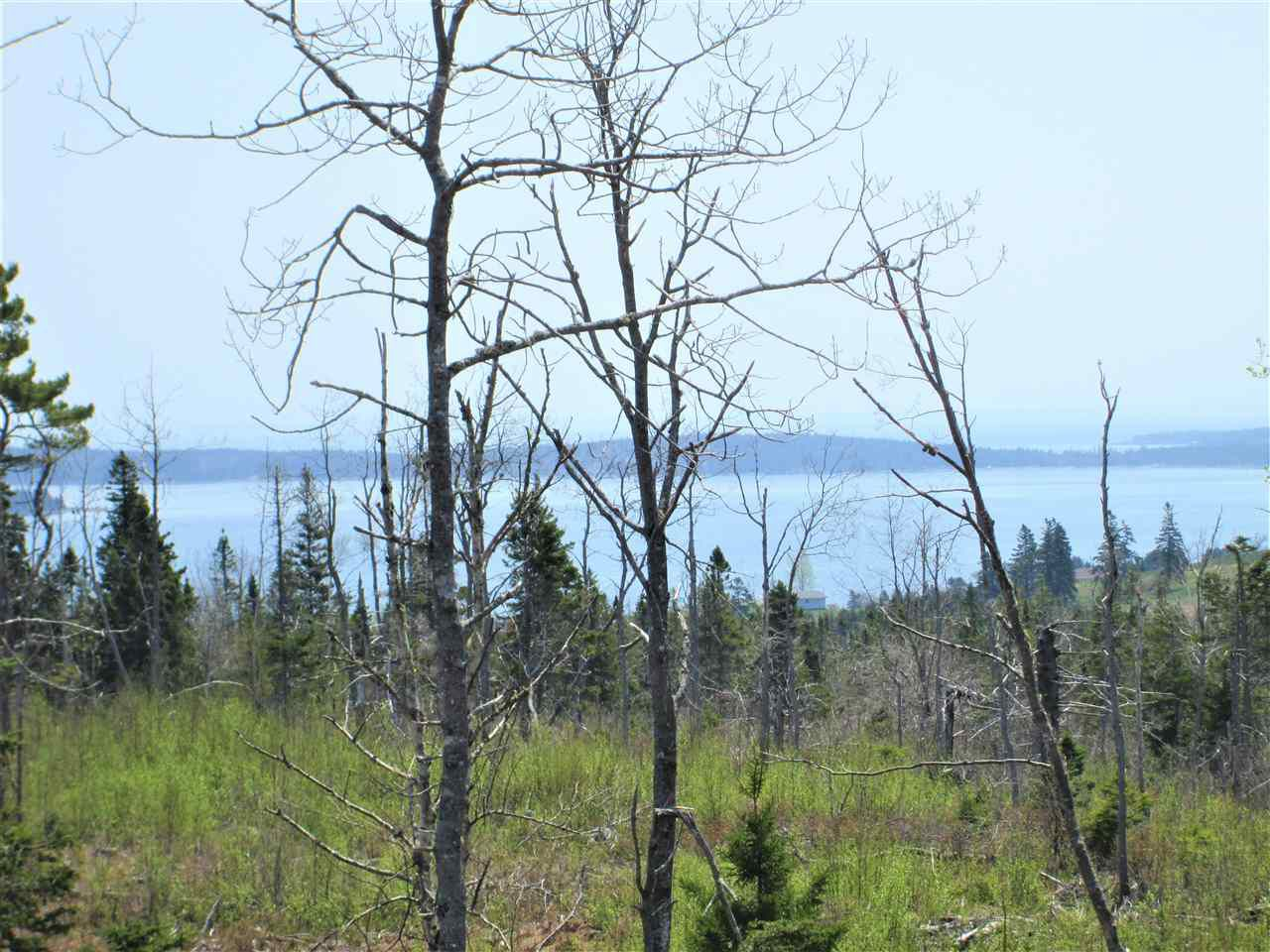 Photo 12: Photos: 3 lots Highway 331 in Dublin Shore: 405-Lunenburg County Vacant Land for sale (South Shore)  : MLS®# 201712817