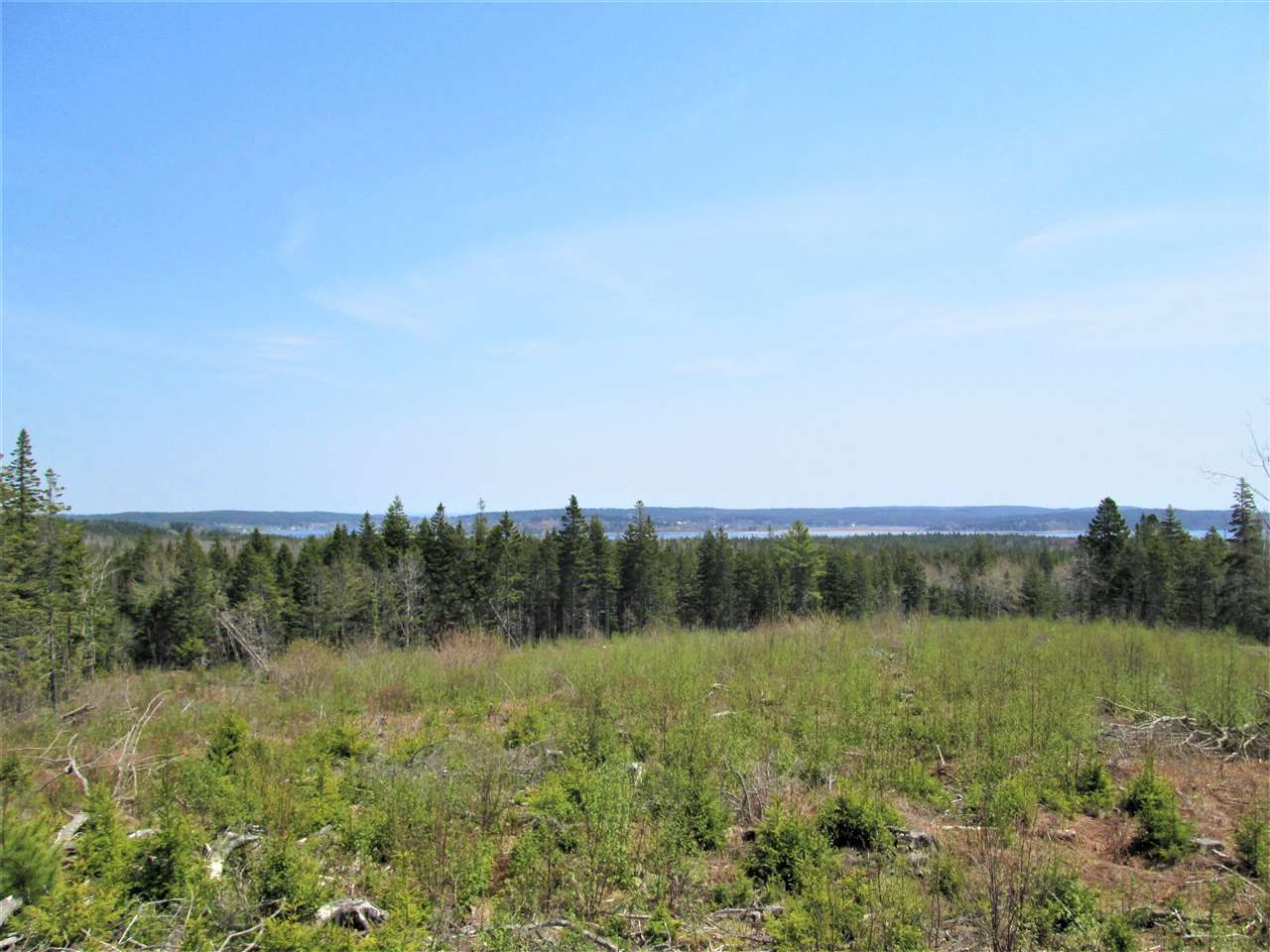 Photo 1: Photos: 3 lots Highway 331 in Dublin Shore: 405-Lunenburg County Vacant Land for sale (South Shore)  : MLS®# 201712817