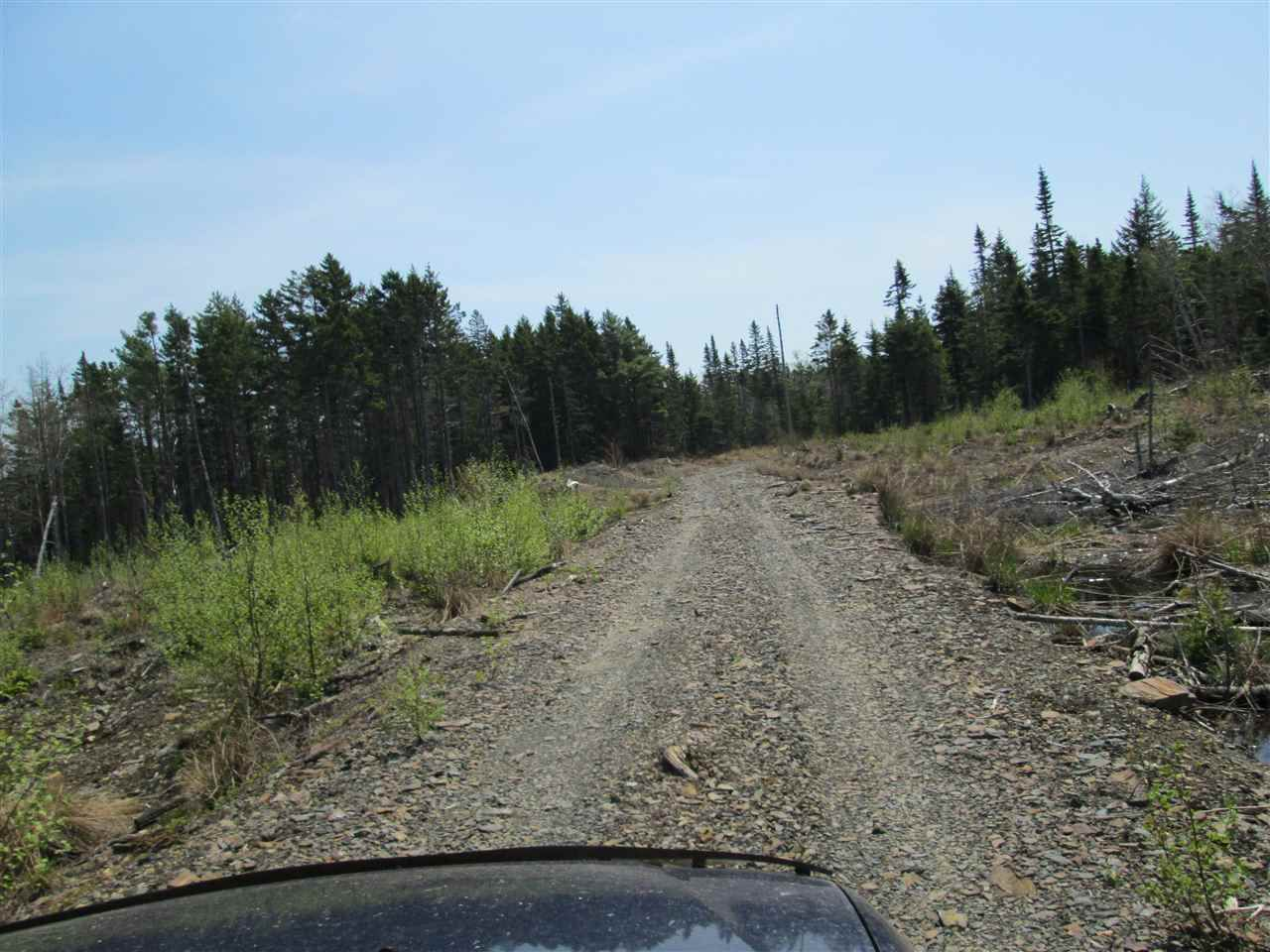 Photo 5: Photos: 3 lots Highway 331 in Dublin Shore: 405-Lunenburg County Vacant Land for sale (South Shore)  : MLS®# 201712817
