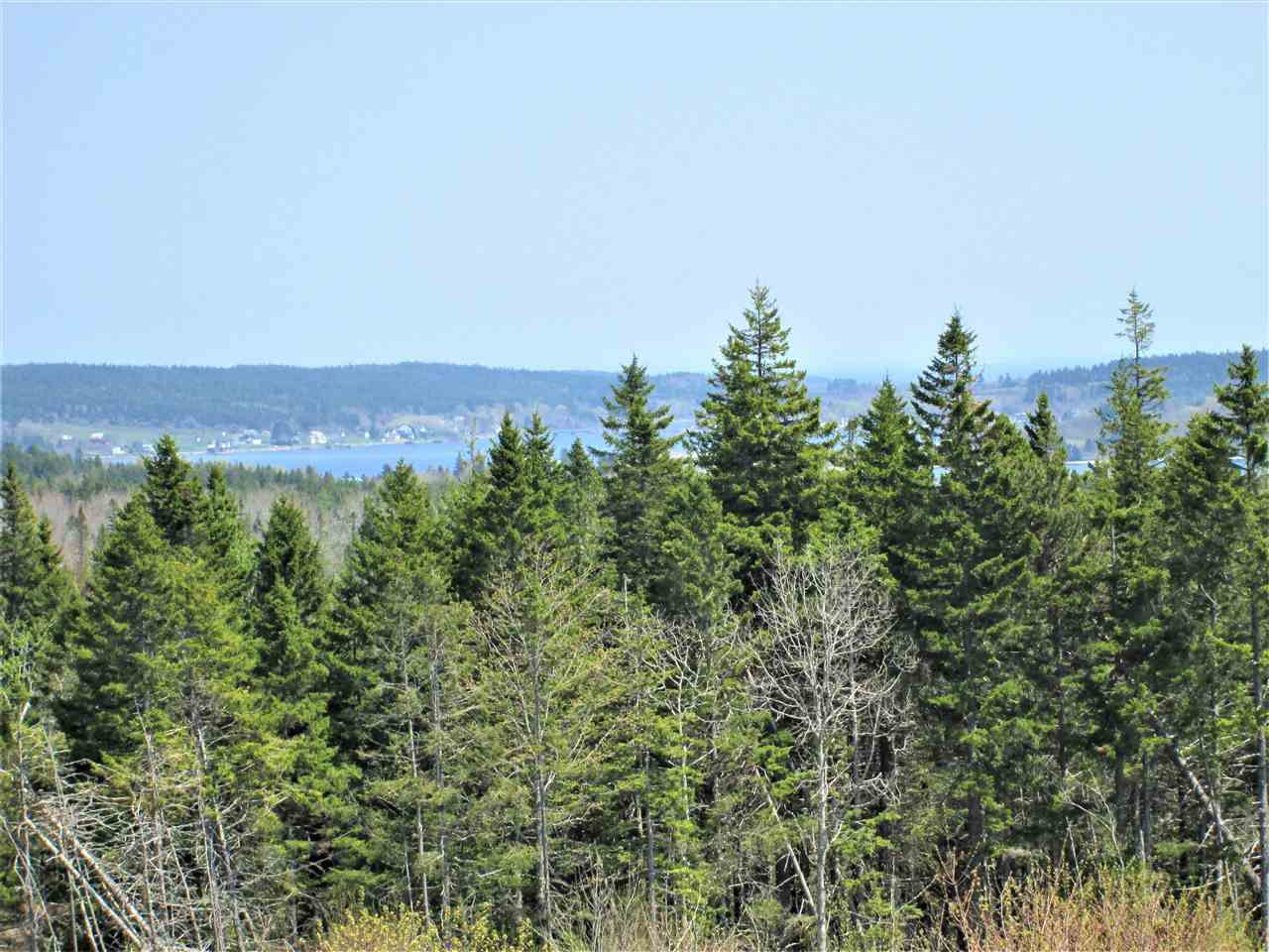 Photo 10: Photos: 3 lots Highway 331 in Dublin Shore: 405-Lunenburg County Vacant Land for sale (South Shore)  : MLS®# 201712817
