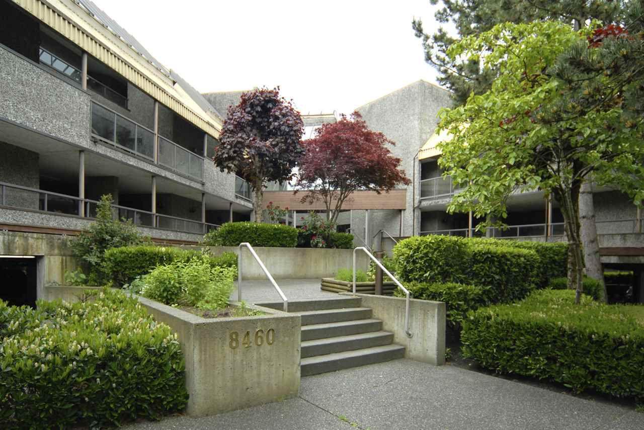 "Main Photo: 123 8460 ACKROYD Road in Richmond: Brighouse Condo for sale in ""ARBORETUM"" : MLS®# R2059394"