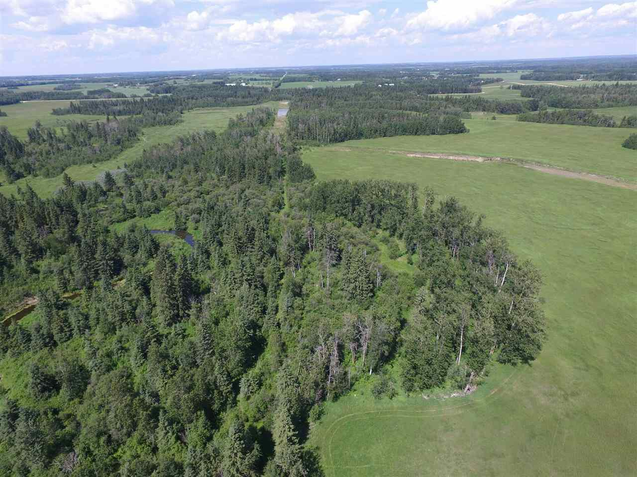 Main Photo: Twp Rd 470 Rge Rd 244: Rural Wetaskiwin County Rural Land/Vacant Lot for sale : MLS®# E4145125
