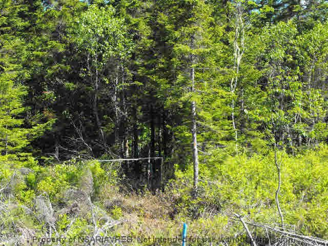 Main Photo: LOT 4 COOKS BROOK DIVERSION HWY 332 in Bayport: 405-Lunenburg County Vacant Land for sale (South Shore)  : MLS®# 5028510