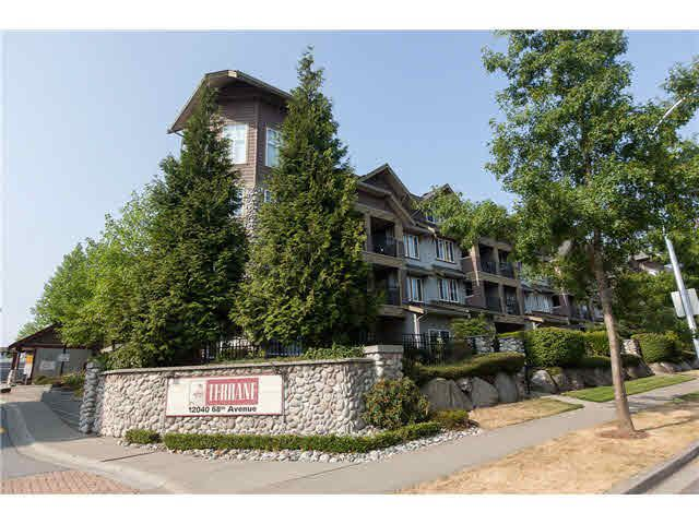 "Main Photo: 113 12040 68 Avenue in Surrey: West Newton Townhouse for sale in ""TERRANE"" : MLS®# F1446726"