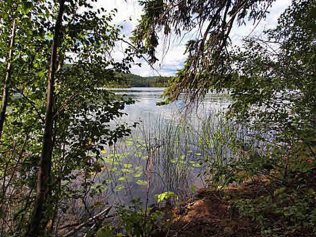 Main Photo: 4068 EAGLE CREEK Road in Canim Lake: Canim/Mahood Lake Home for sale (100 Mile House (Zone 10))  : MLS®# N247476