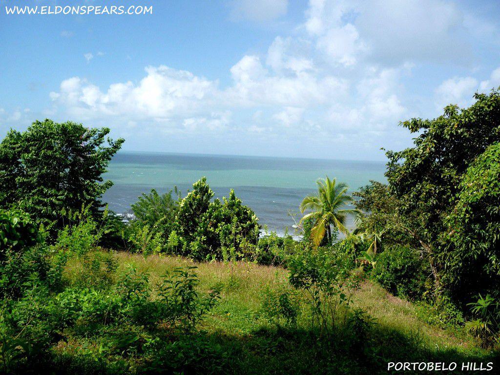 Portobelo Hills - Ocean view.