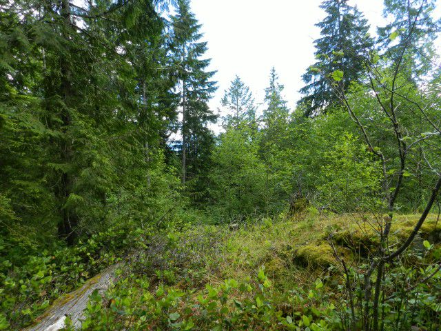 Main Photo: LOT 40 Mountainview Road in Pender Harbour: Pender Harbour Egmont Home for sale (Sunshine Coast)  : MLS®# V1012841