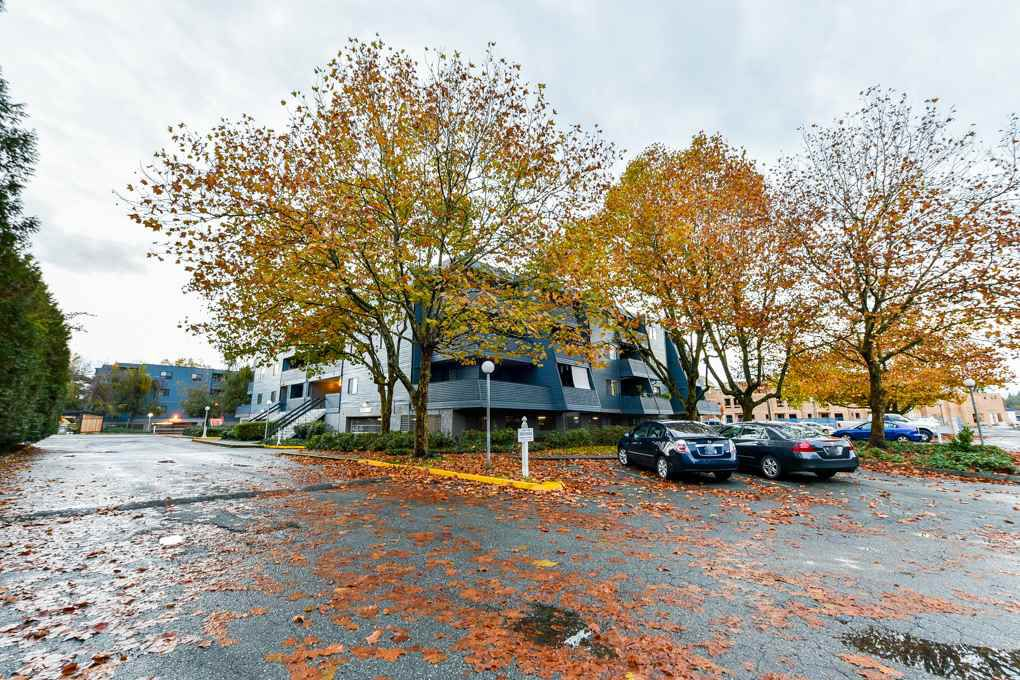 """Main Photo: 302 5906 176A Street in Surrey: Cloverdale BC Condo for sale in """"Wyndham Estate"""" (Cloverdale)  : MLS®# R2319413"""