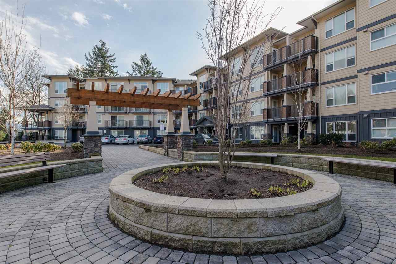 "Main Photo: 213 2565 CAMPBELL Avenue in Abbotsford: Central Abbotsford Condo for sale in ""Abacus"" : MLS®# R2242051"