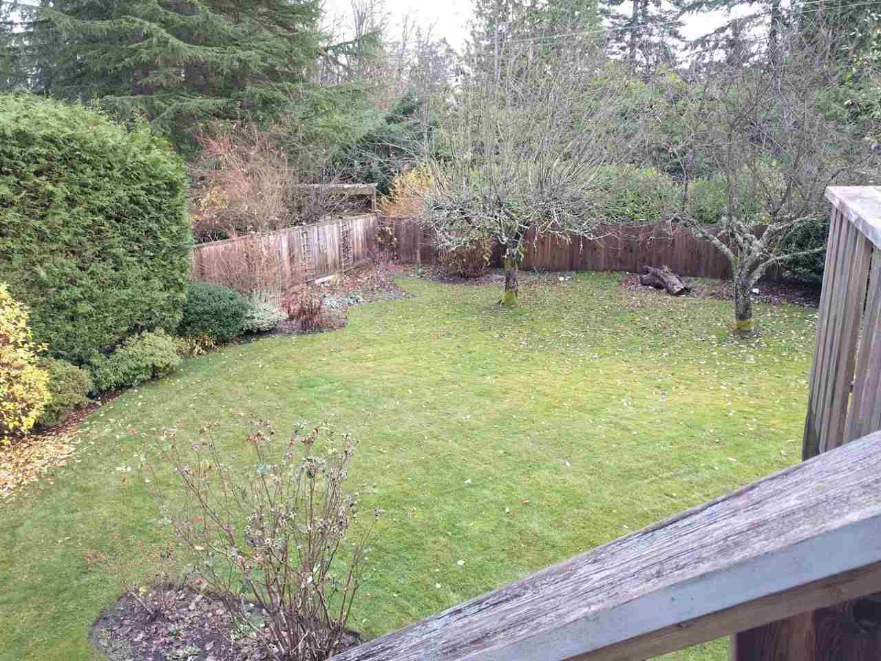 Large south-facing backyard