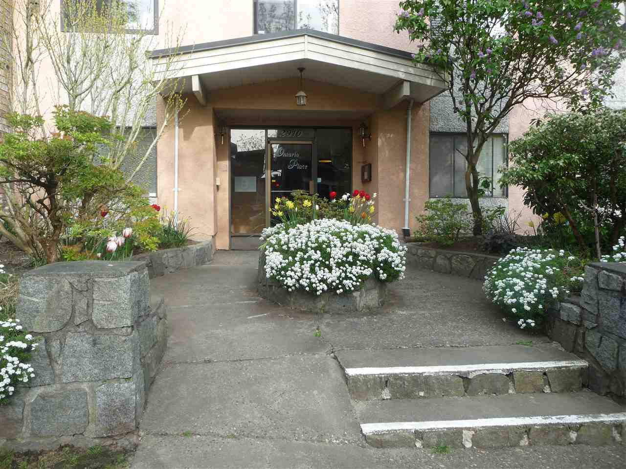 Main Photo: 103 2910 ONTARIO Street in Vancouver: Mount Pleasant VE Condo for sale (Vancouver East)  : MLS®# R2058838