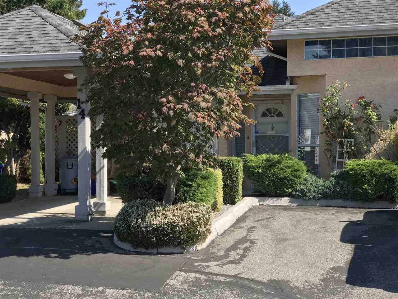 """Main Photo: 14 11950 LAITY Street in Maple Ridge: West Central Townhouse for sale in """"THE MAPLES"""" : MLS®# R2315847"""