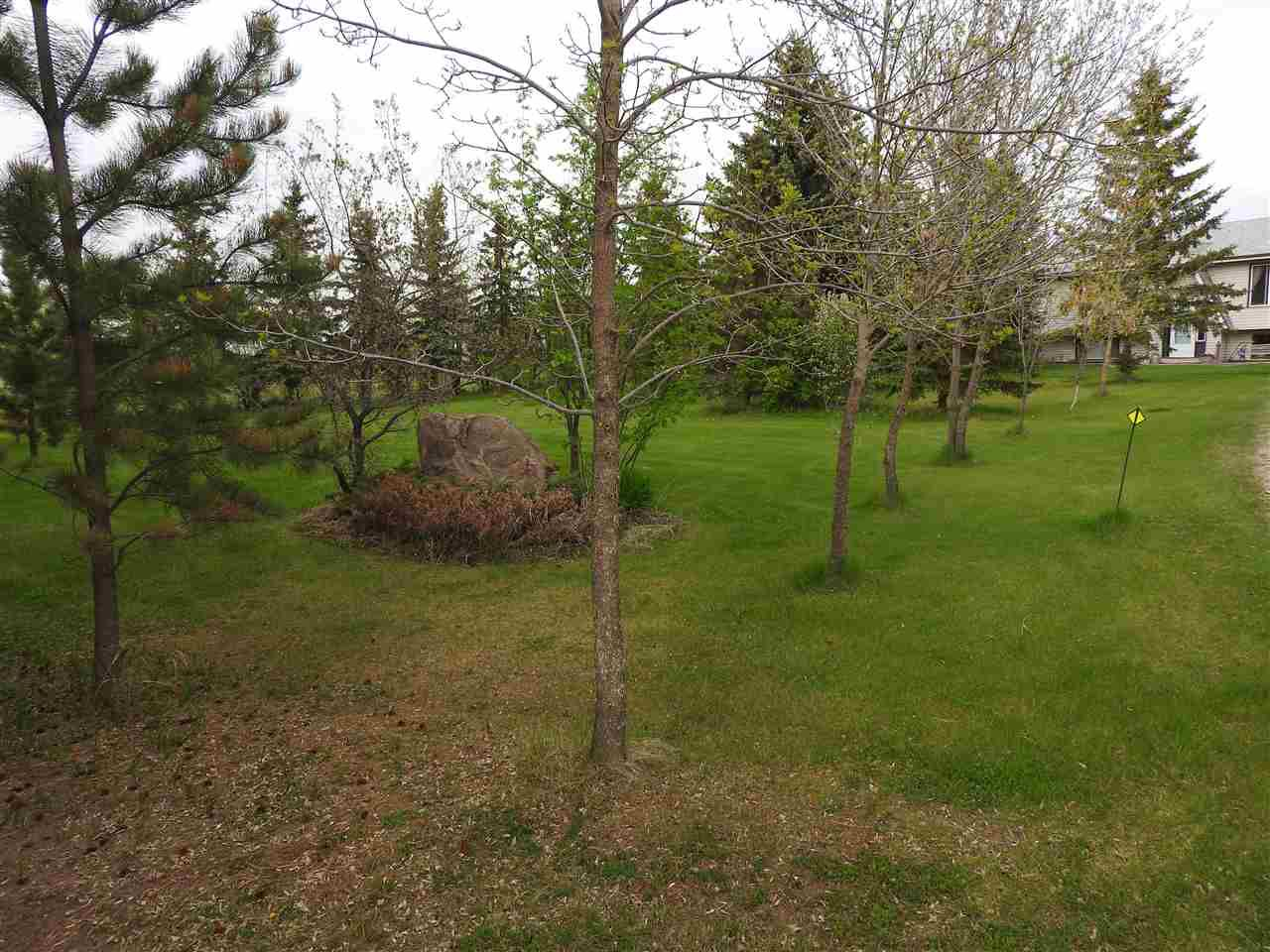 Photo 28: Photos: 55301 RGE RD 262: Rural Sturgeon County House for sale : MLS®# E4158158