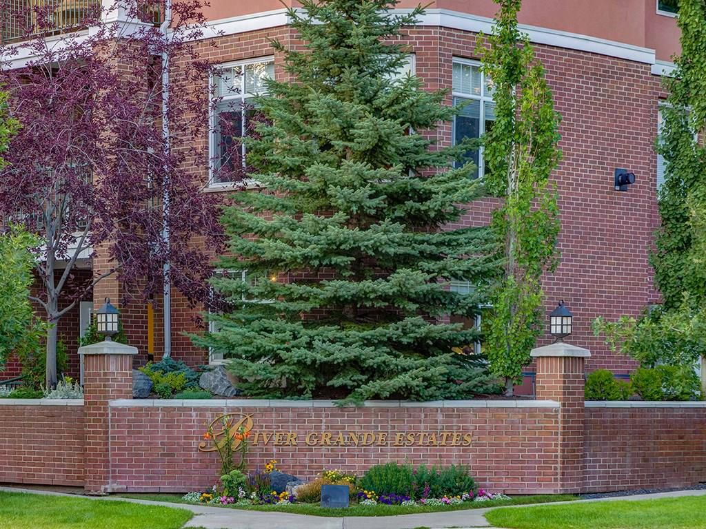 Main Photo: 208 60 24 Avenue SW in Calgary: Erlton Condo for sale : MLS®# C4171682
