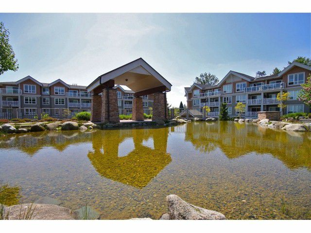 Main Photo: # 213 6460 194TH ST in Surrey: Clayton Condo for sale (Cloverdale)  : MLS®# F1311464