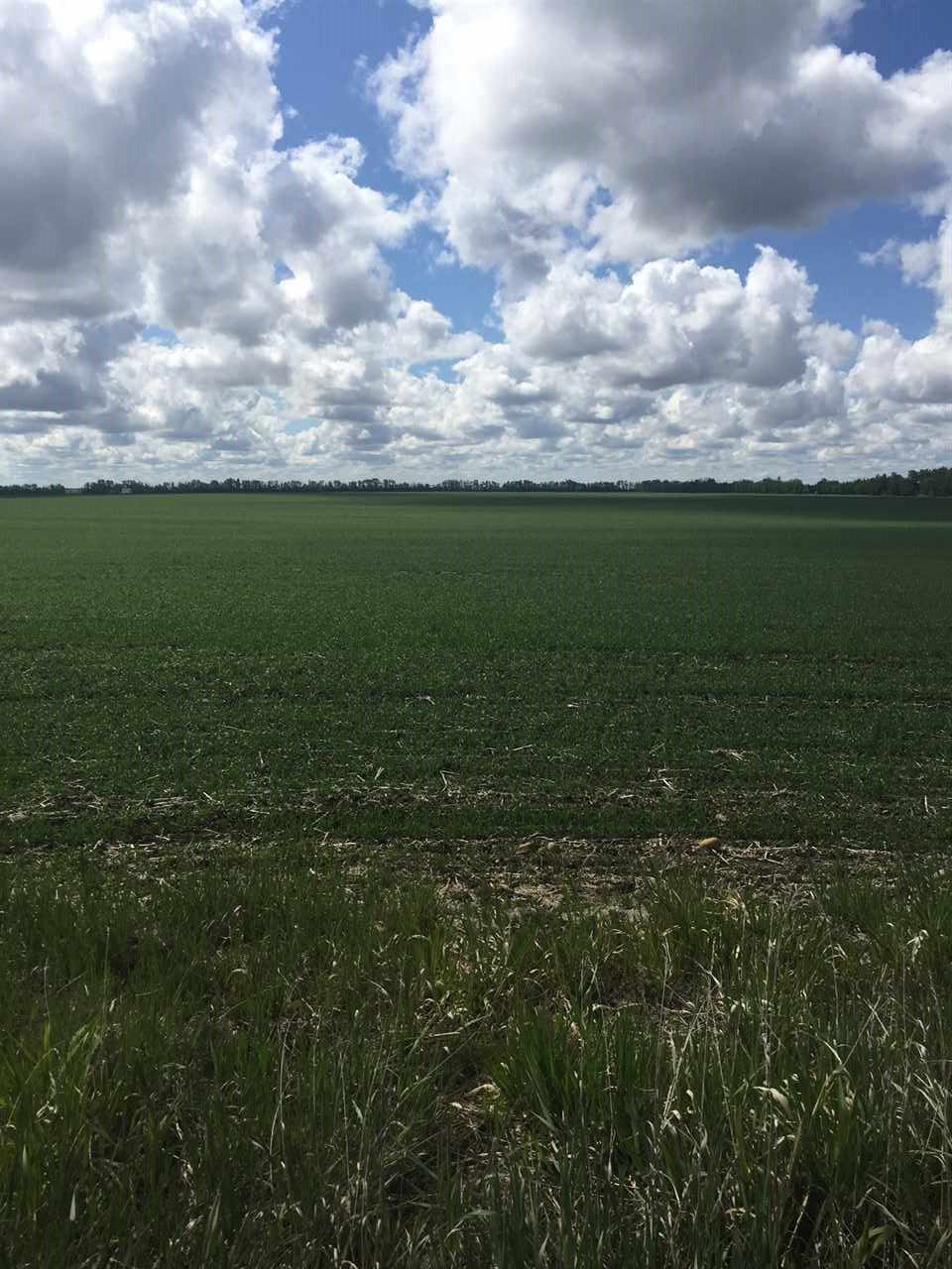 Main Photo: RR 245: Rural Sturgeon County Rural Land/Vacant Lot for sale : MLS®# E4058434