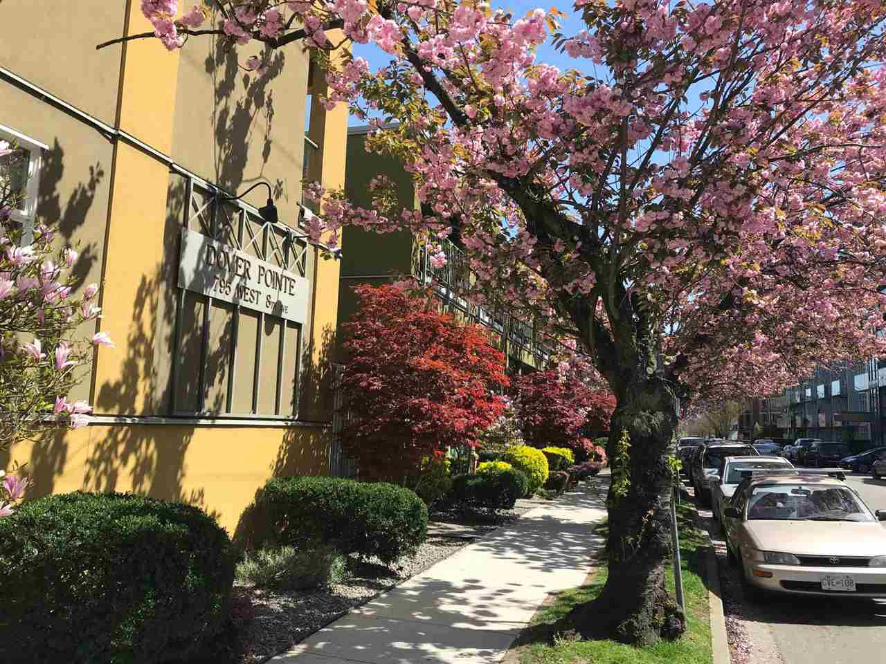 """Main Photo: 30 795 W 8TH Avenue in Vancouver: Fairview VW Townhouse for sale in """"Dover Pointe"""" (Vancouver West)  : MLS®# R2281073"""
