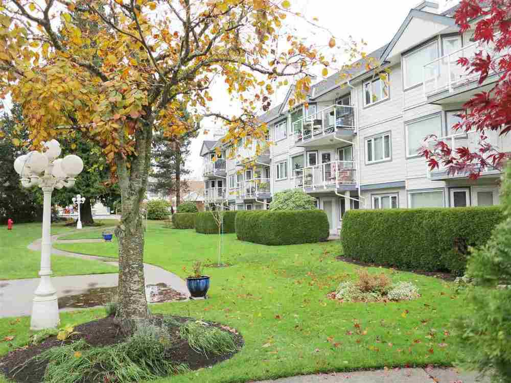 Main Photo: 203 13965 16 AVENUE in South Surrey White Rock: Home for sale : MLS®# R2015117